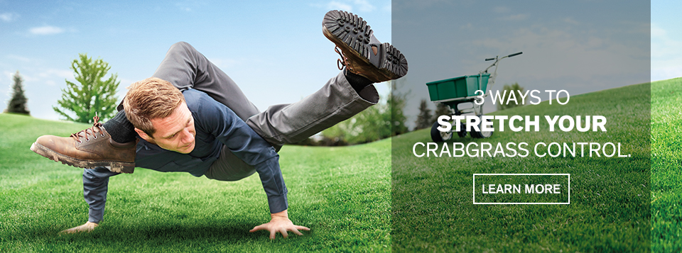 3 ways to stretch your crabgrass control